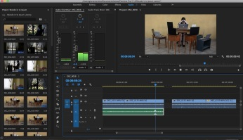 Audio editing - Screenshot from Premiere Pro CC